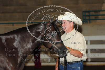 Halter Classes Thursday 25