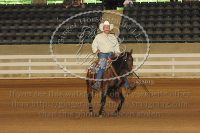 Reining Classes Friday July 26