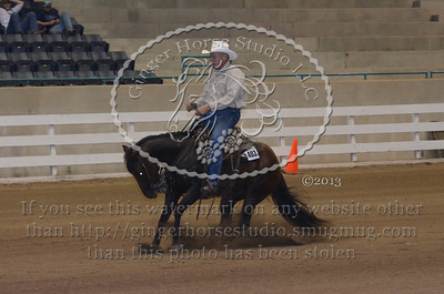 Reining Classes Saturday July 27