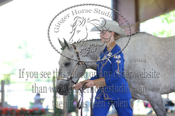 South Central  District 2014 4-H Horseshow