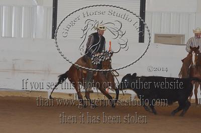 Stockhorse & Ranch Cutting