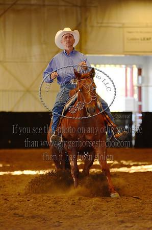 Ranch Reining