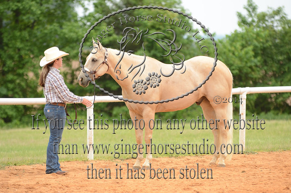 Union Co Saddle Club Open Show May 10, 2014