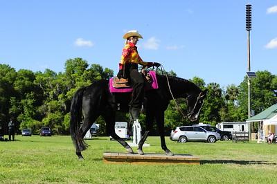 West Volusia Saddle Club