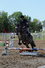 Horse Shows 2012 : 9 galleries with 8061 photos