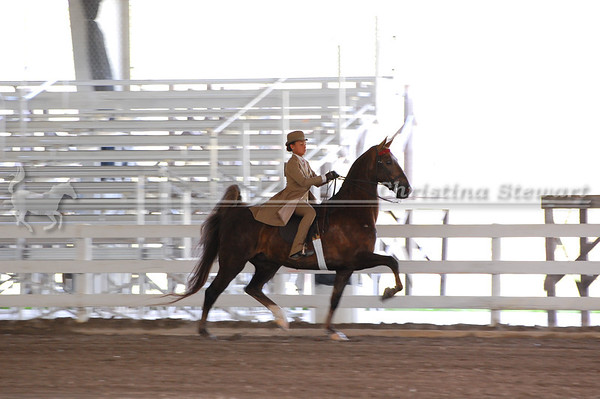 2011 Lutheran Classic Horse Show