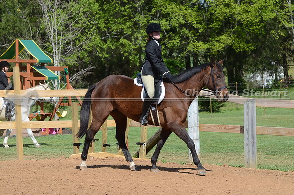 12 and Up Walk Trot Classes