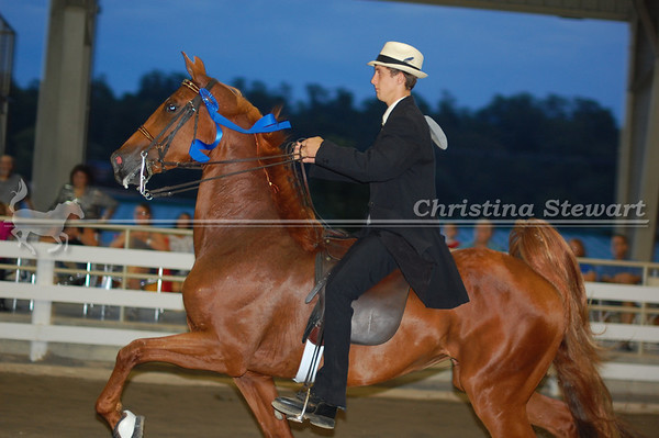 2011 Tennessee State Show