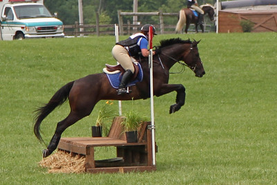 South Farm July 2011