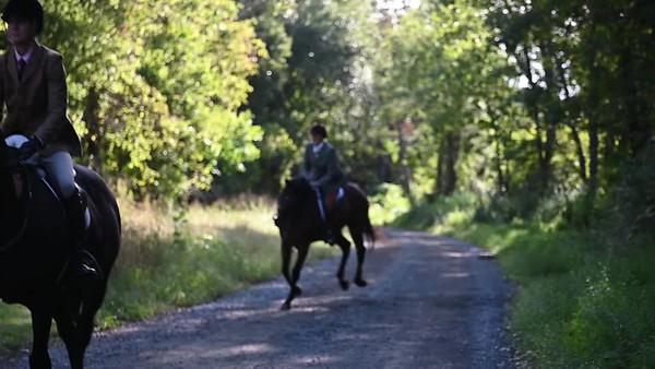 Bull Run 9-19 km-409