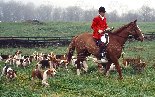Albert Poe hunting Middleburg Hounds from Snake Hill Meet in the 1990's