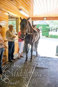 Loudoun Horse Show-15