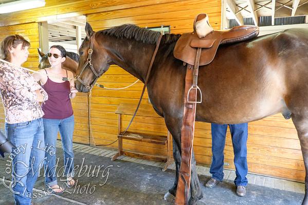 Loudoun Horse Show-8