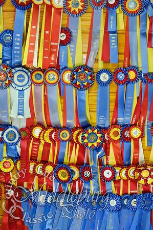Loudoun Horse Show-2