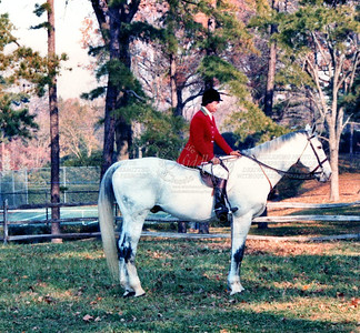 """Meg"" (Master of Middleburg Hunt) 1987 Willow Oaks"