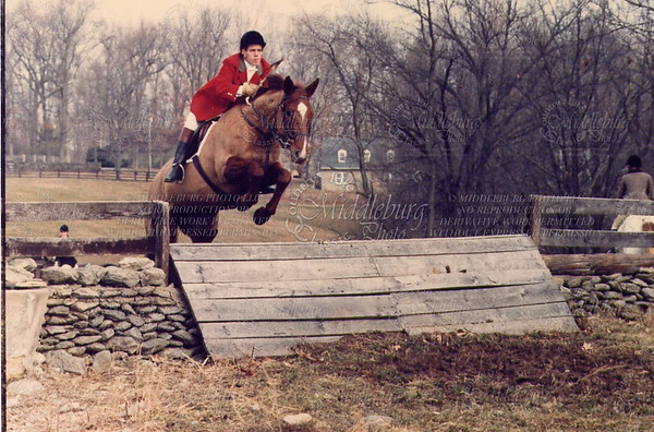 Middleburg Hunt Brad #50
