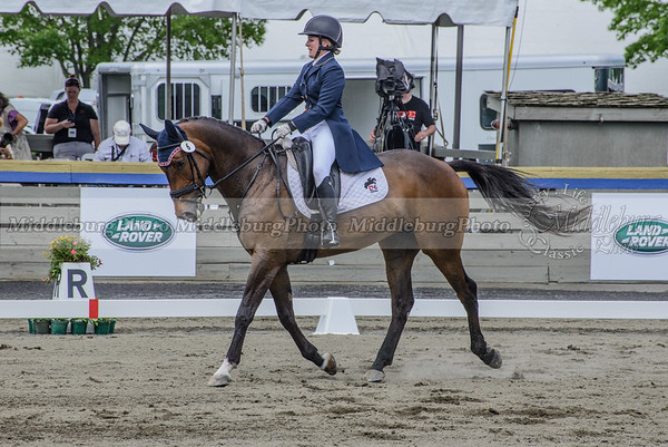 Great Meadow dressage-44