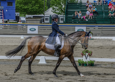 Great Meadow dressage-24
