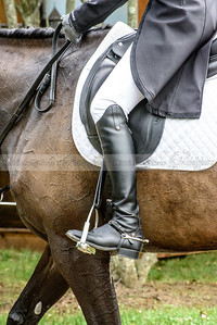 Great Meadow dressage-13