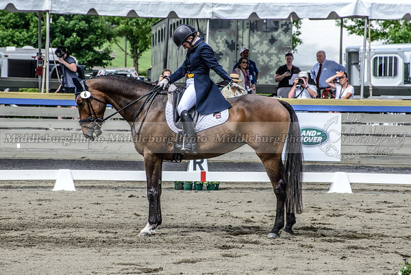 Great Meadow dressage-34