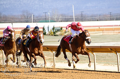 3rd Race-Maiden Claming 4 1/2 furlongs   Laugh Till I Cry
