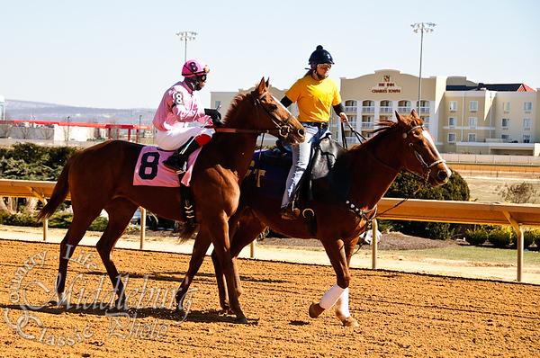 3rd Race-Maiden Claming 4 1/2 furlongs Idontgetoutmuch