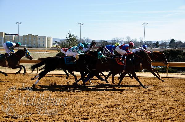 2nd Race, 6 1/2 furlongs