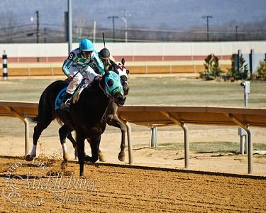 2nd Race, 6 1/2 furlongs Levite
