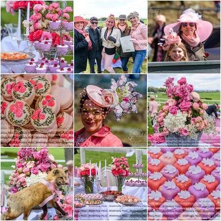 Pretty in Pink Middleburg Hunt Point to Point tailgate
