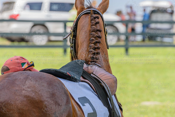 middleburg point to point -80