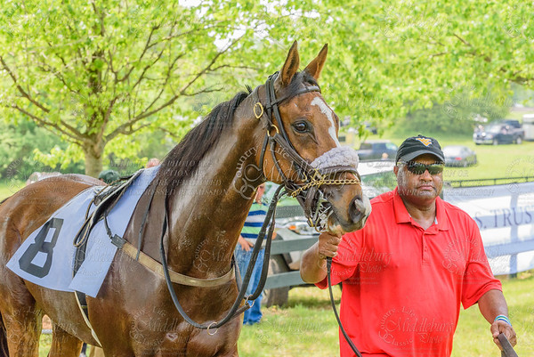 middleburg point to point -89 (1)