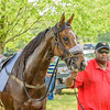 middleburg point to point -89