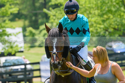 middleburg point to point -211