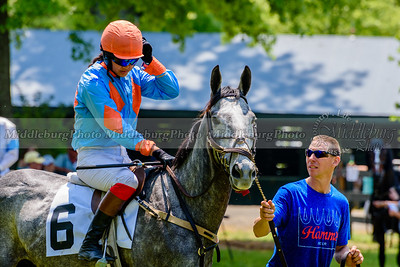 middleburg point to point -203