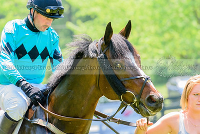 middleburg point to point -212