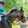 middleburg point to point -210