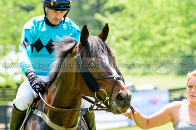 middleburg point to point -213