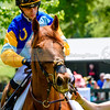 middleburg point to point -216