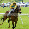 middleburg point to point -562