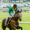 middleburg point to point -560