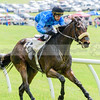 middleburg point to point -566