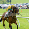 middleburg point to point -563