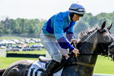 middleburg point to point -634