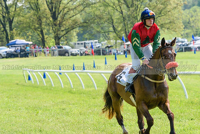 middleburg point to point -650