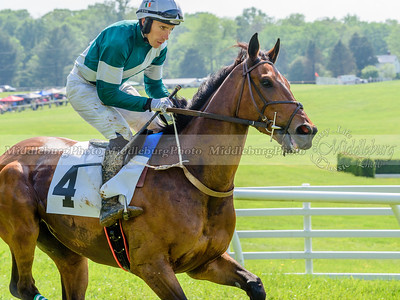 middleburg point to point -645