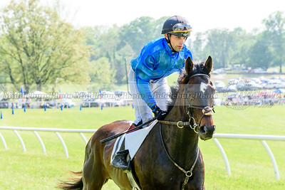 middleburg point to point -655