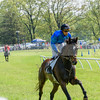 middleburg point to point -657
