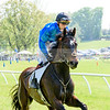 middleburg point to point -656