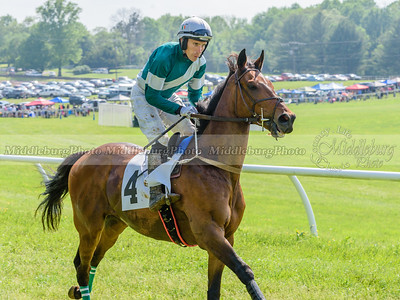 middleburg point to point -640