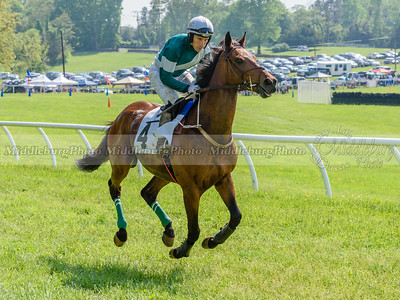 middleburg point to point -642